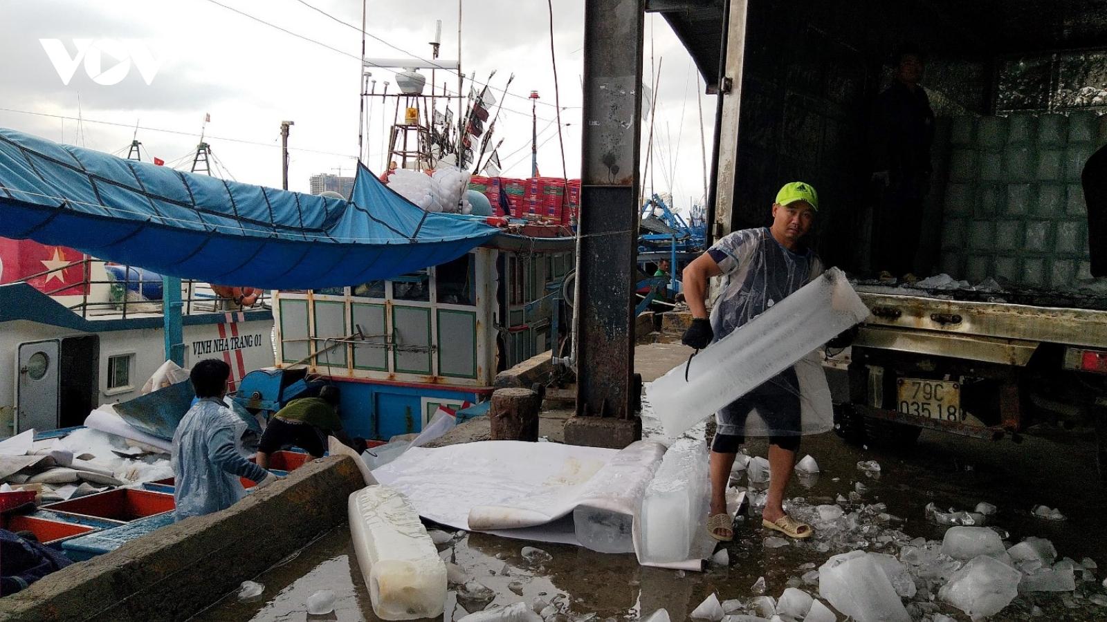"""Khánh Hòa: Nỗ lực cấp """"giấy thông hành"""" để tàu cá ra khơi"""