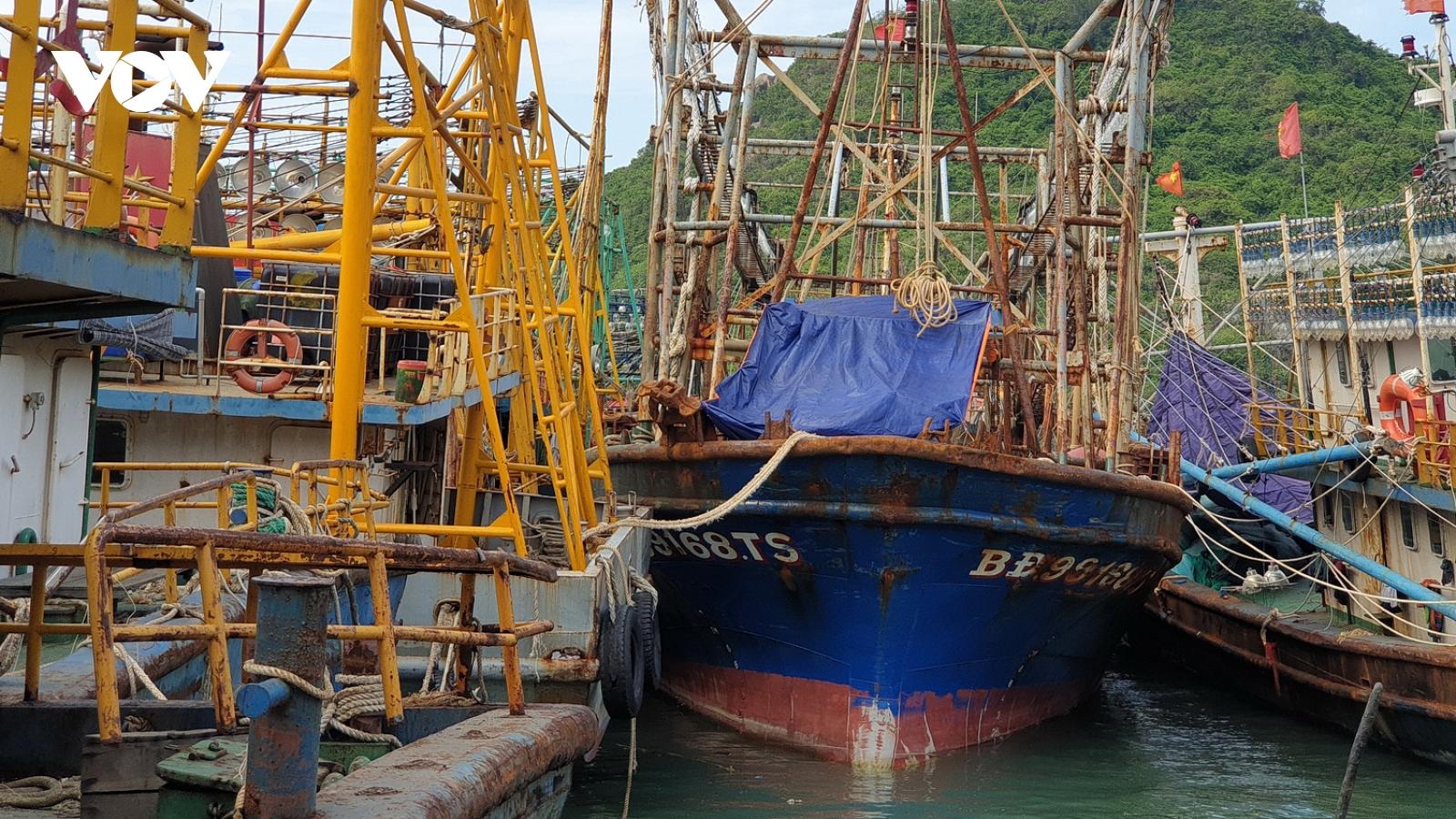 Một công ty bảo hiểm đã bán bảo hiểm cho tàu vỏ thép 67