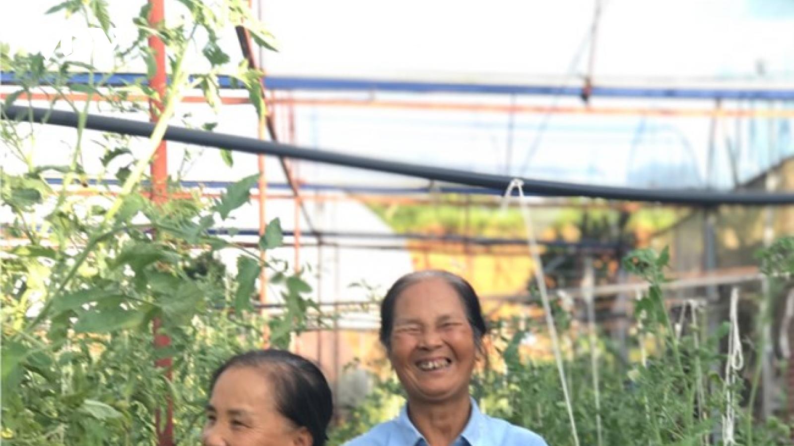 """""""Nữ tướng thời bình"""" Nguyễn Thị Luyến"""