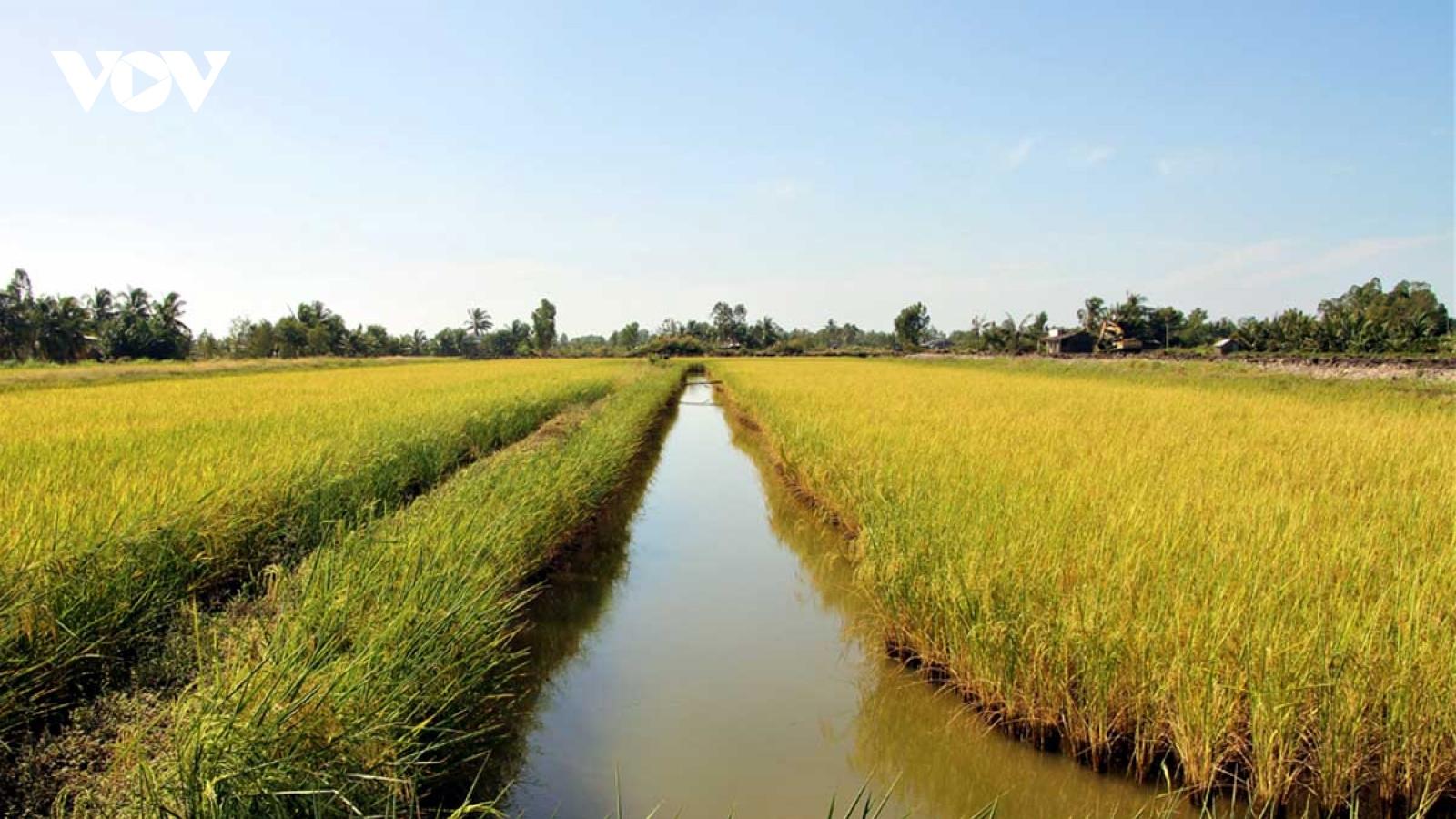 Nông nghiệp là nền tảng và trụ đỡ cho nền kinh tế