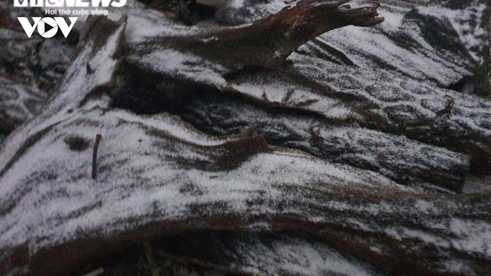 Tuyết phủ trắng xóa tại Y Tý