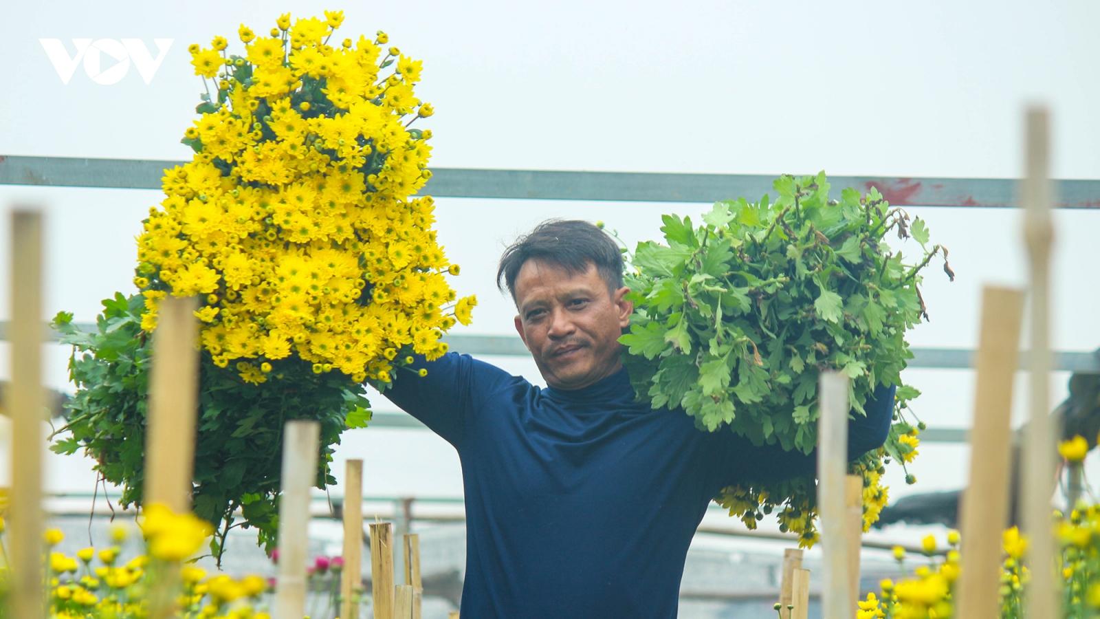 Làng hoa Tây Tựu đã sẵn sàng phục vụ cho dịp Tết Nguyên Đán