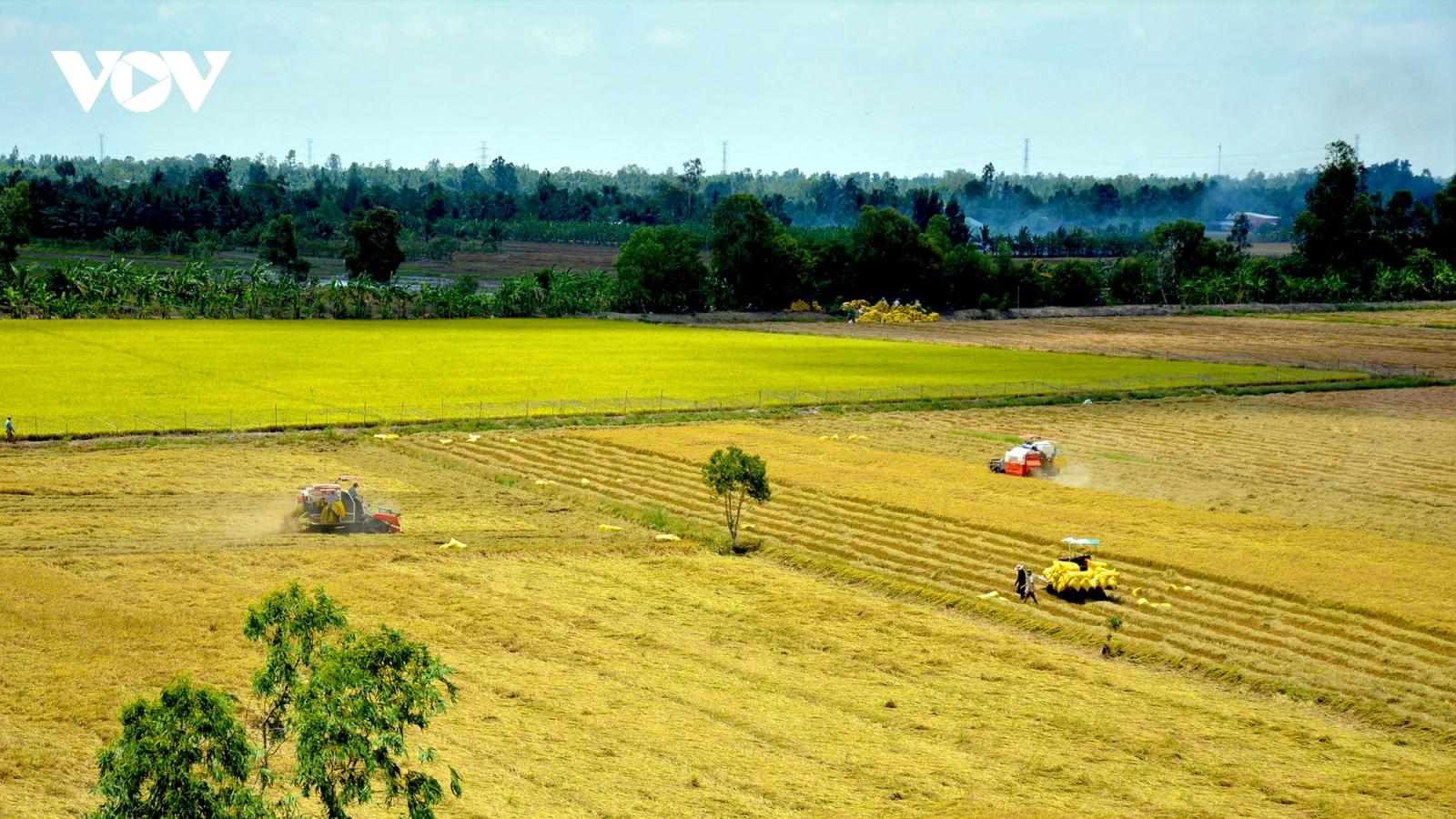 Hướng tới nền nông nghiệp hiện đại, nông dân chuyên nghiệp