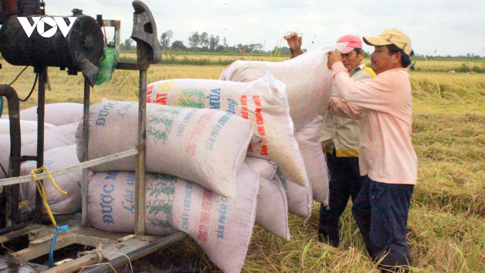 Việt Nam xuất khẩu khoảng 6,15 triệu tấn gạo trong năm 2020