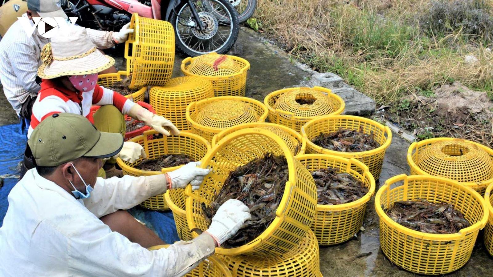 Mỹ bỏ áp thuế chống bán phá giá 1 doanh nghiệp thủy sản Việt Nam