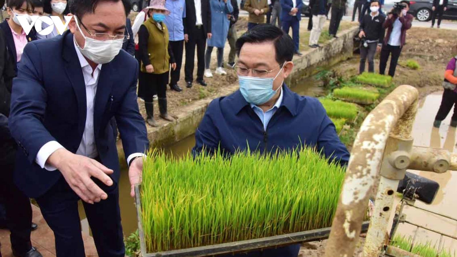Bí thư Thành ủy Hà Nội Vương Đình Huệ động viên công nhân, nông dân sản xuất đầu xuân
