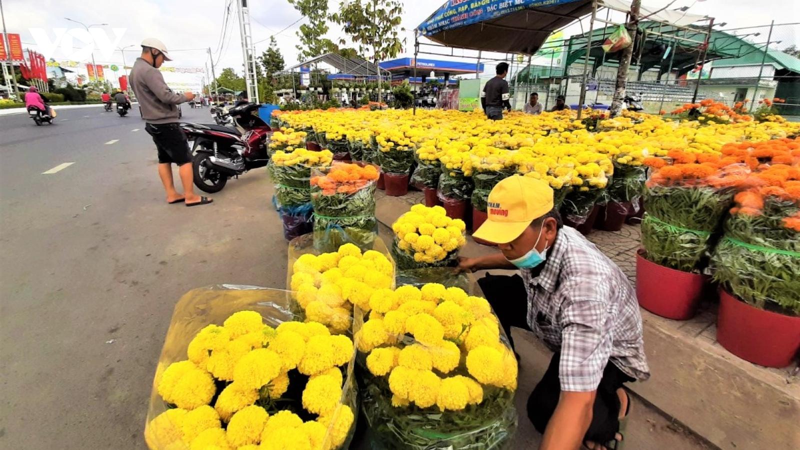 Chợ hoa Tết Cà Mau: Ít người mua bán nhưng vẫn nhộn nhịp