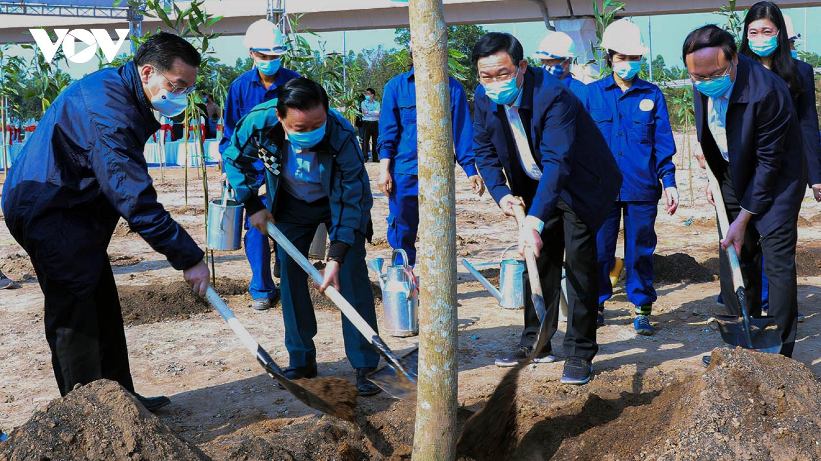 """Trồng cây để """"Hà Nội trở thành thành phố 4 mùa hoa nở"""""""