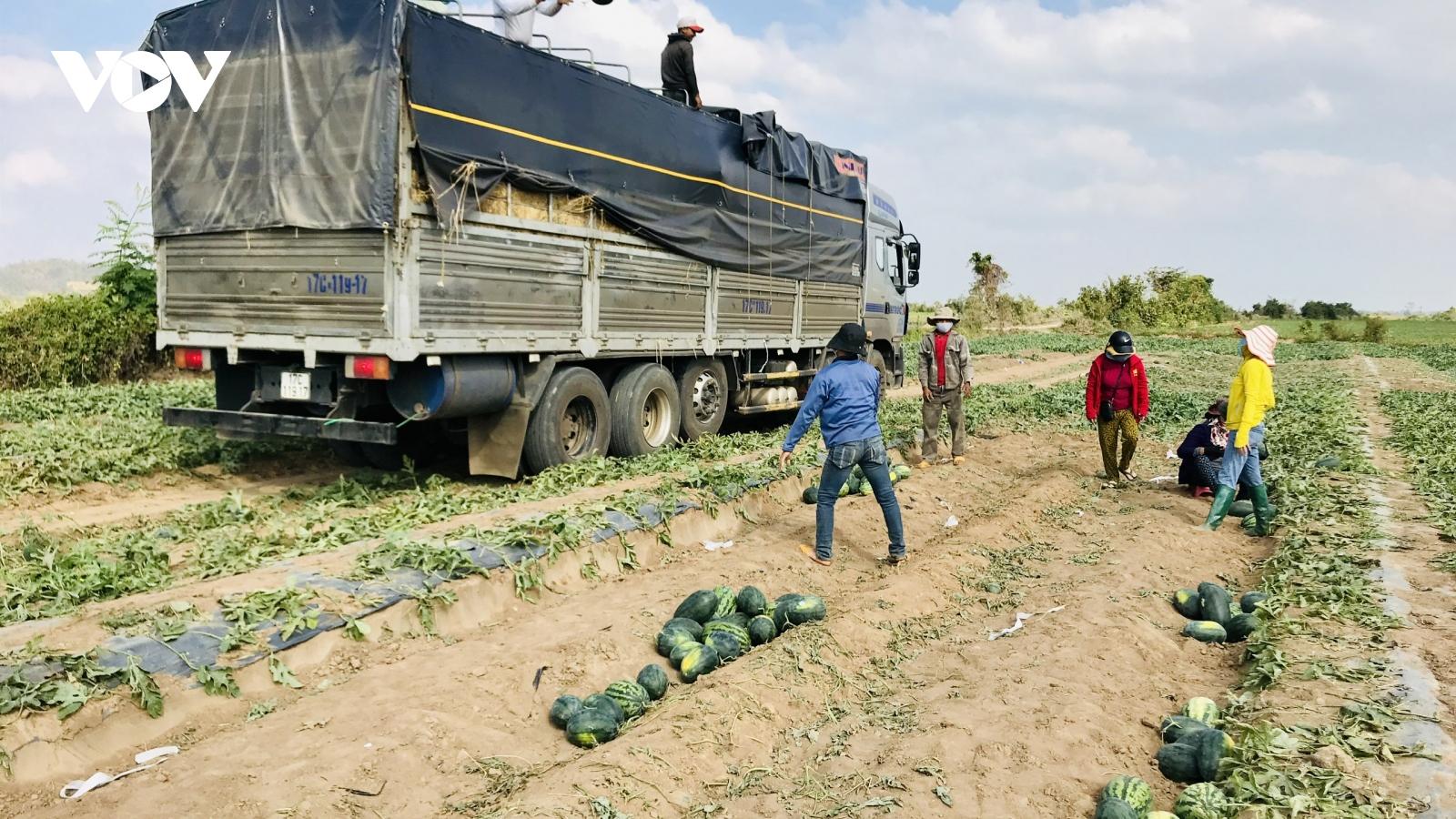 Gia Lai tạo điều kiện tốt nhất cho người dân tiêu thụ nông sản