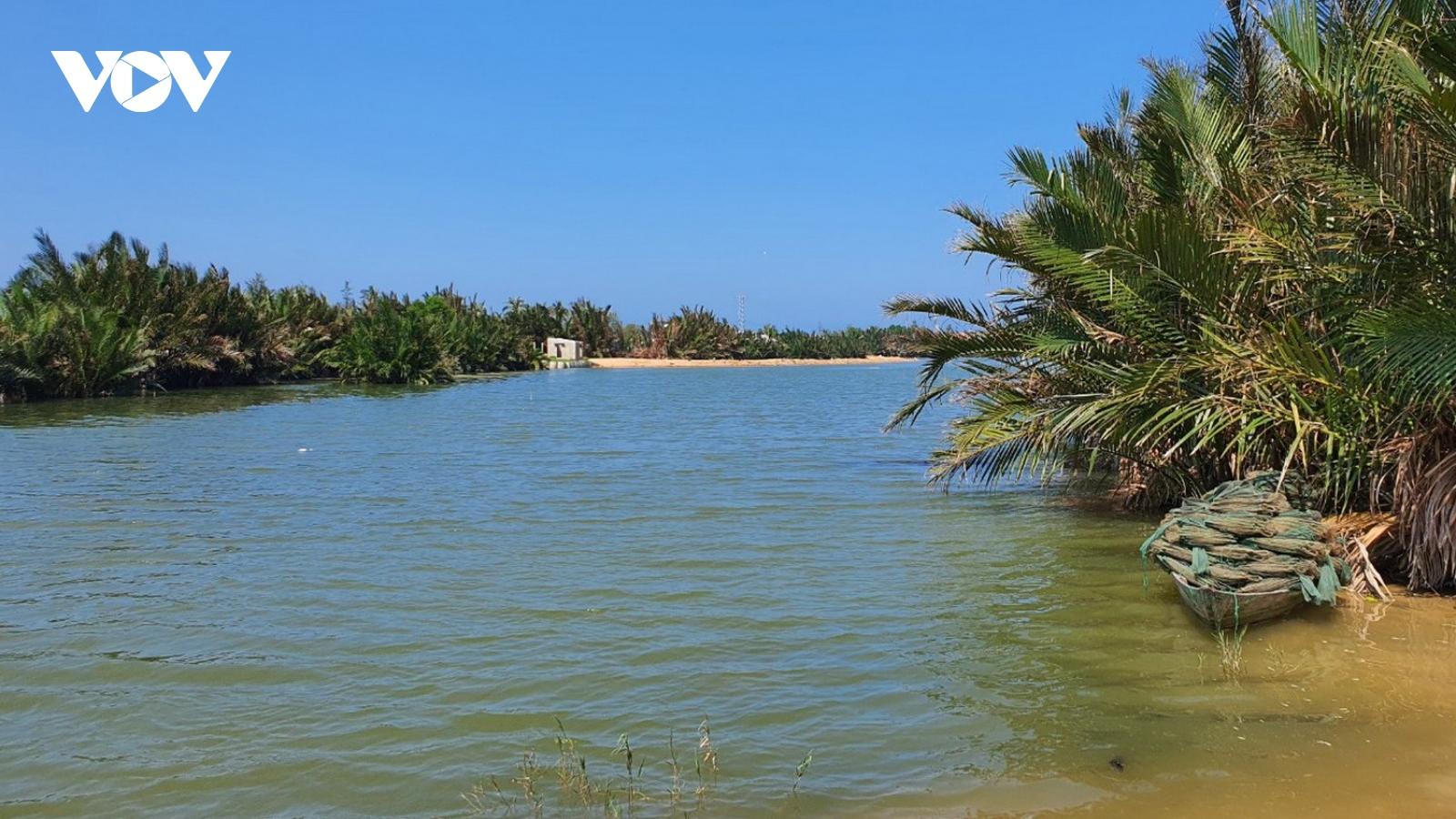 Quảng Nam chuyển đổi mục đích 35ha rừng cho thủy điện và khu đô thị