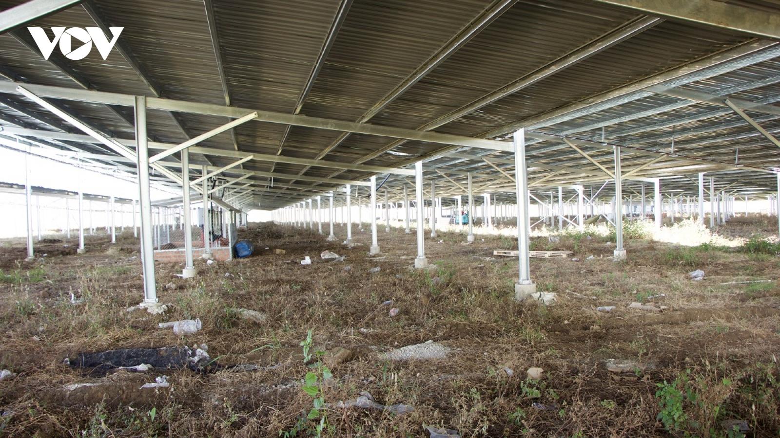 """""""Vẽ"""" dự án điện mặt trời áp mái nhà để hưởng giá bán cao"""