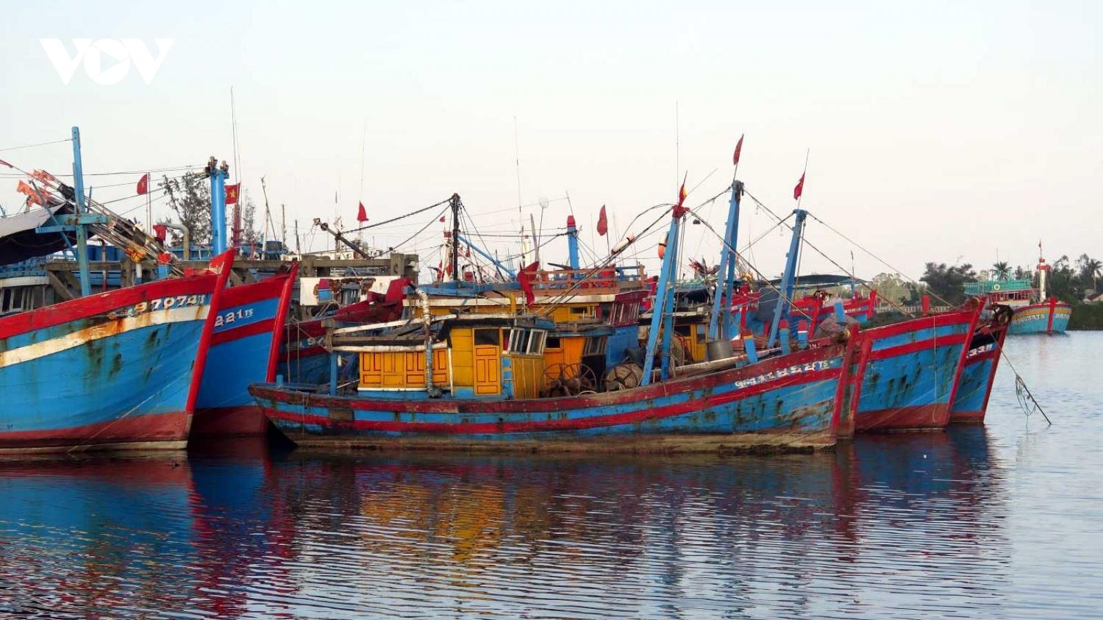 Nan giải bài toán lao động nghề biển ở Quảng Ngãi
