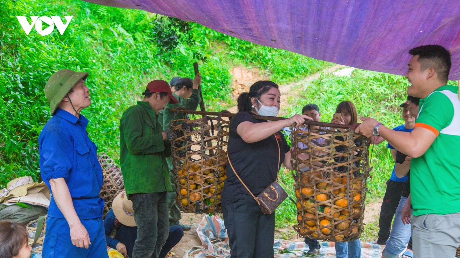 Giải cứu cam sành, phát miễn phí cho bệnh nhân tại Hà Nội