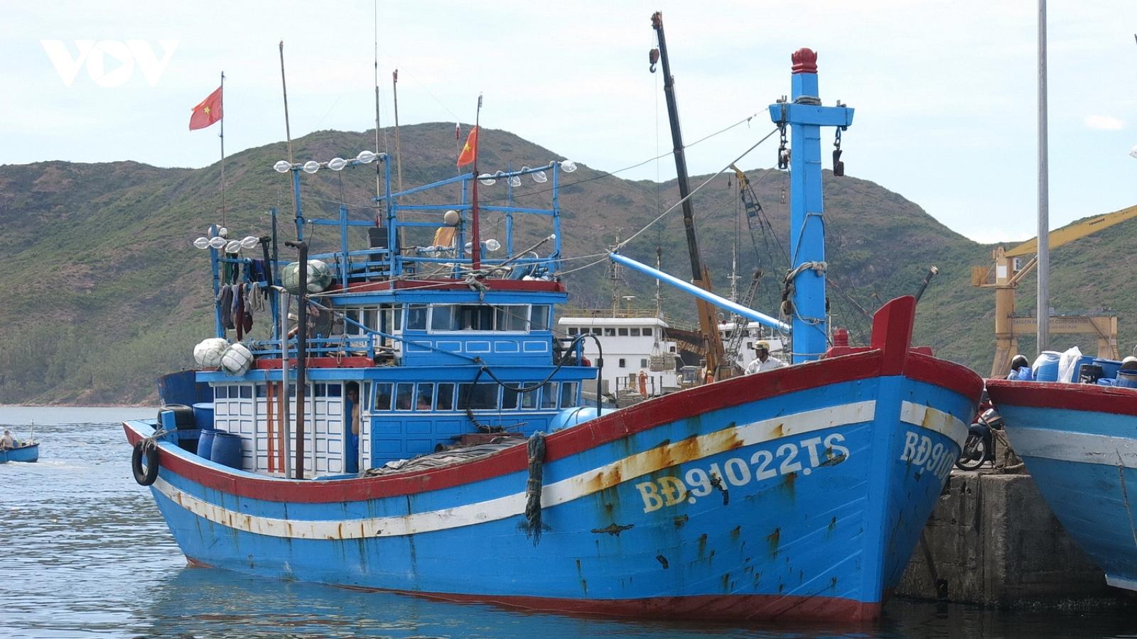 Cấp hơn 2.800 giấy chứng nhận an toàn thực phẩm tàu cá