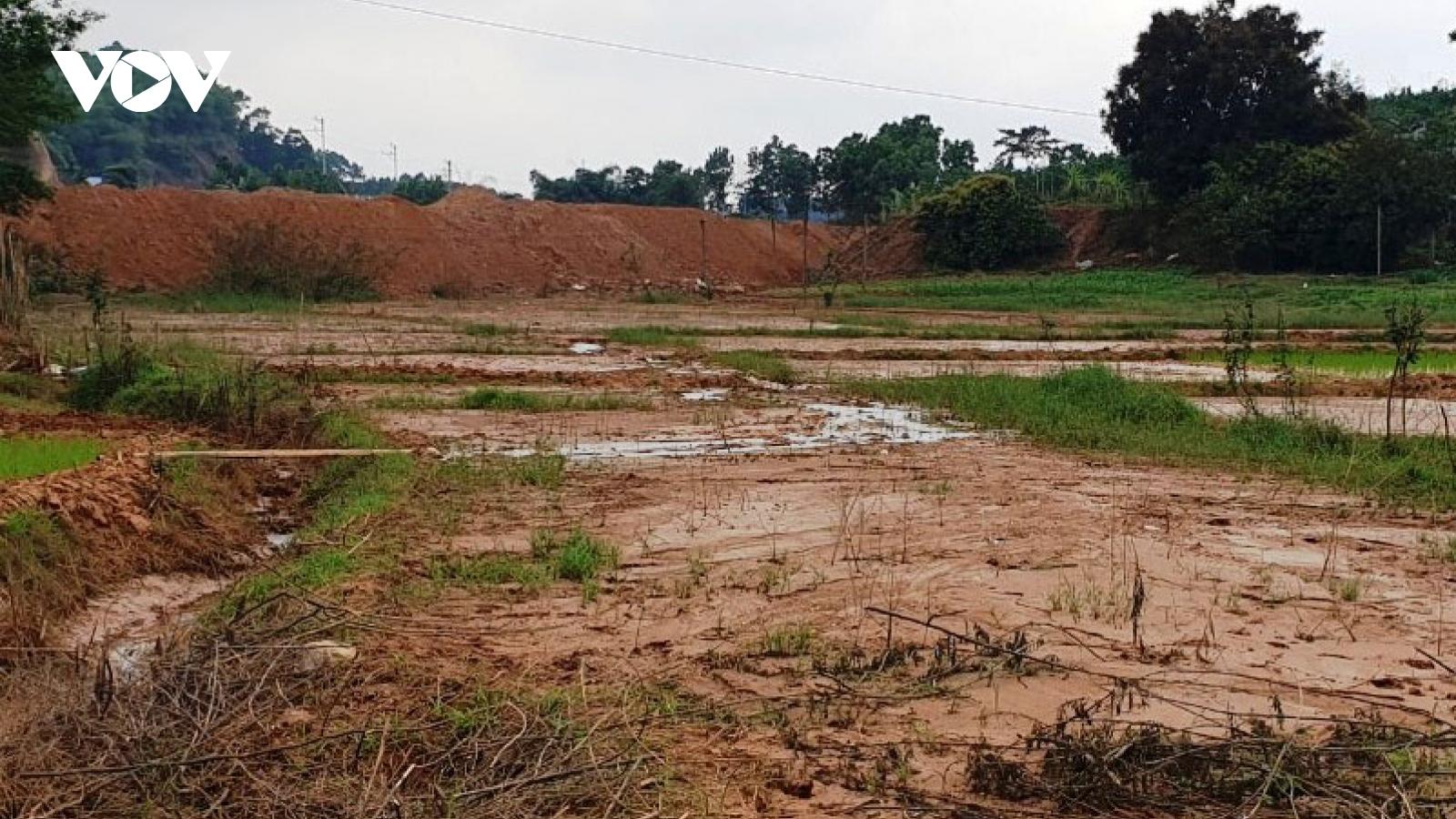 Xót xa bùn đất dự án tràn vào ruộng, người dân không thể trồng cấy