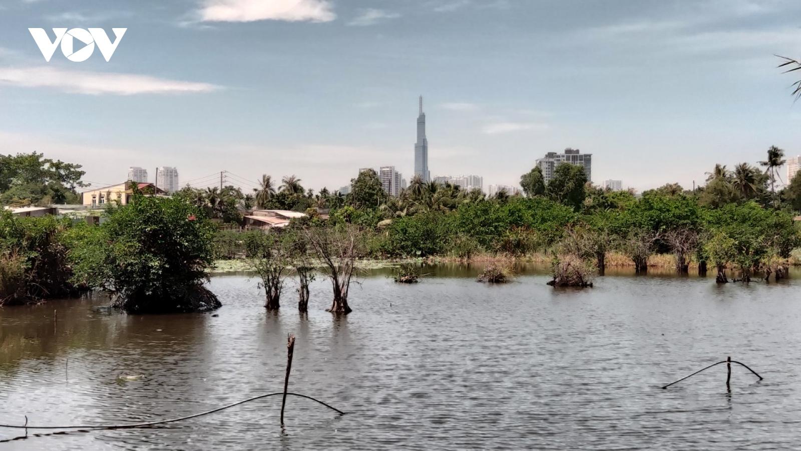 """Sống khổ tại dự án""""treo"""" gần 30 năm ở bán đảoBình Quới - Thanh Đa,TPHCM"""