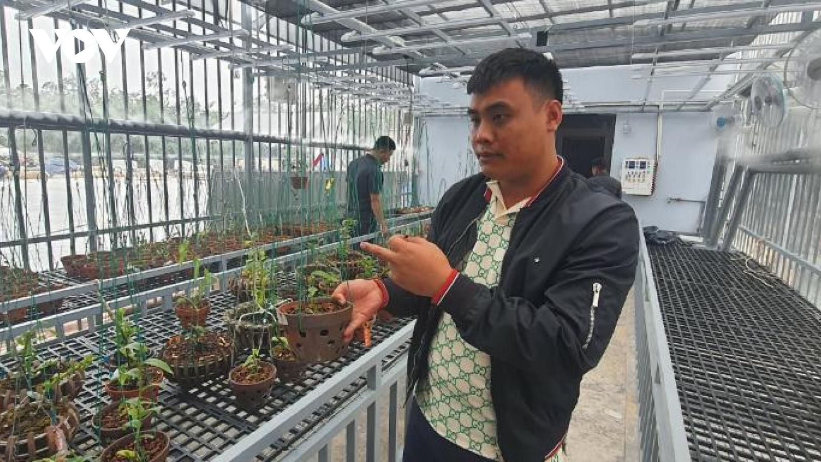 Cơ quan chức năng ở Quảng Ninh lên tiếng về vụ mua bán lan đột biến gần 300 tỷ đồng