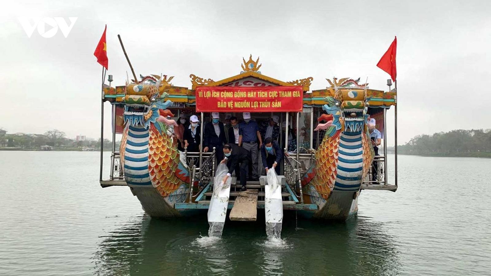 Tái tạo nguồn lợi thủy sản trên sông Hương