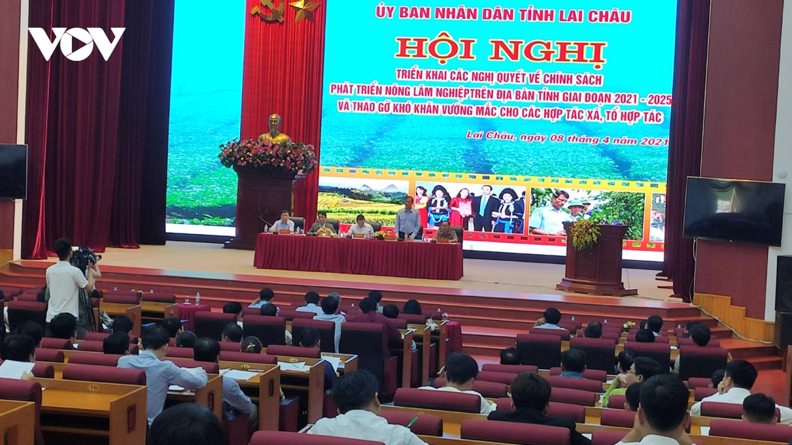 Lai Châu phấn đấu trở thành vùng sản xuất hàng hóa tập trung lớn của khu vực