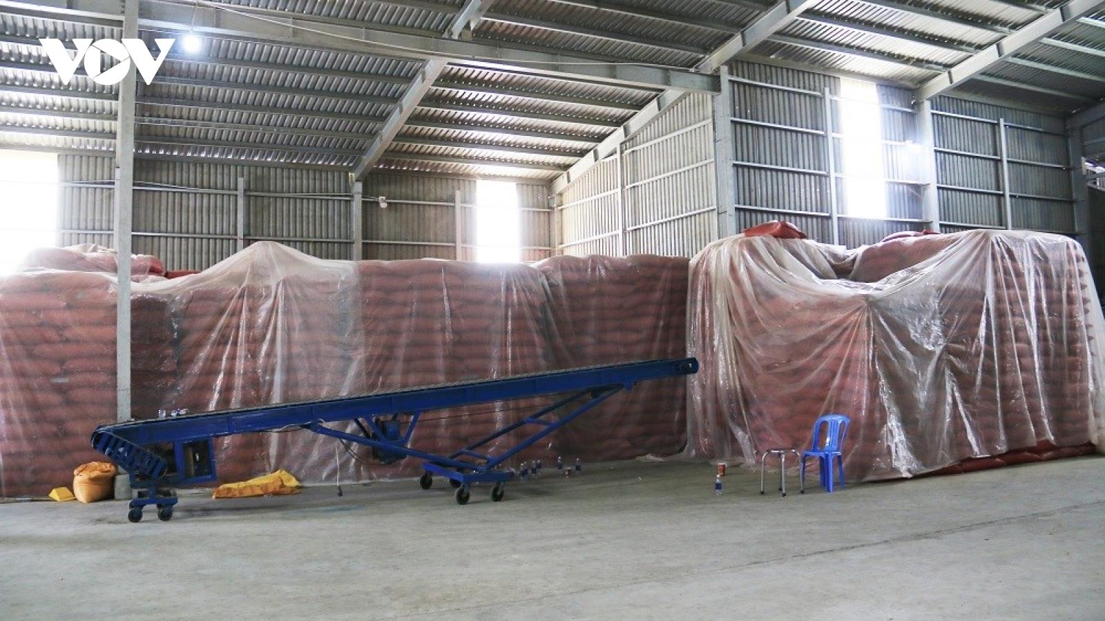 An Giang: Tạm giữ hình sự 2 đối tượng vận chuyển 20 tấn đậu xanh lậu qua biên giới
