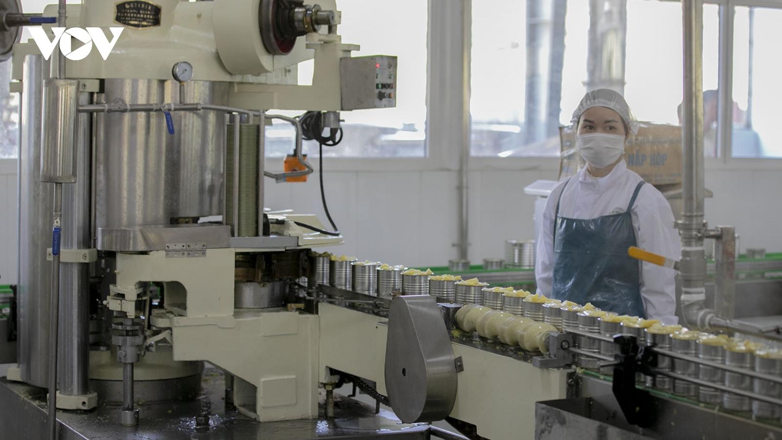 Khánh thành nhà máy chế biến rau quả xuất khẩu quy mô lớn tại Lào Cai