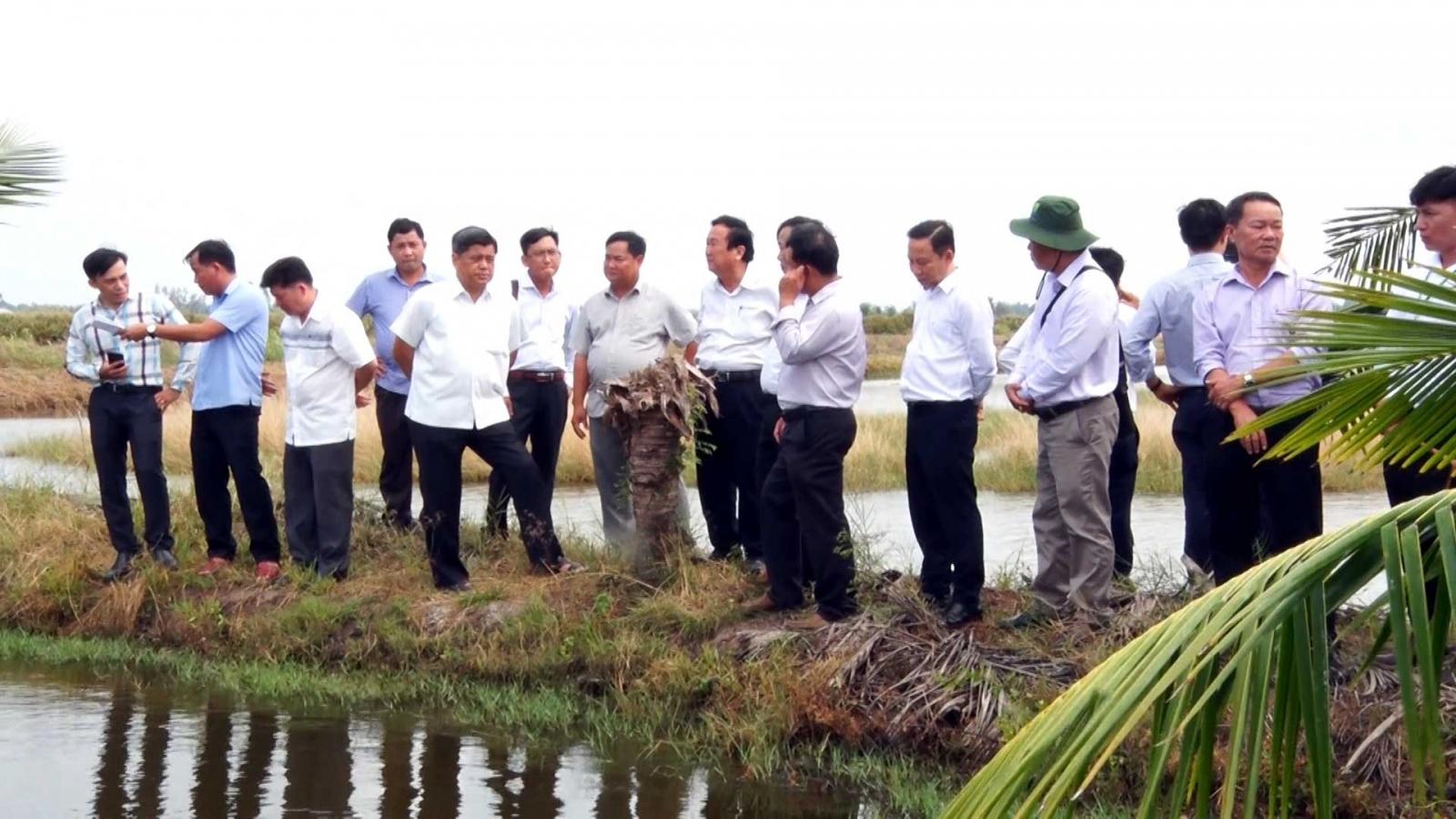 Mô hình tôm-lúa hữu cơ ở Kiên Giang được người dân hưởng ứng
