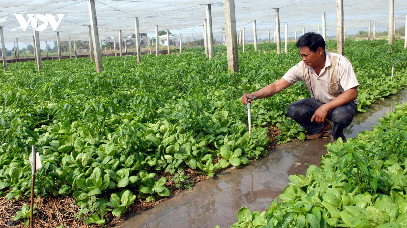 Có nên duy trì hoạt động nông nghiệp ở TP Thủ Đức?
