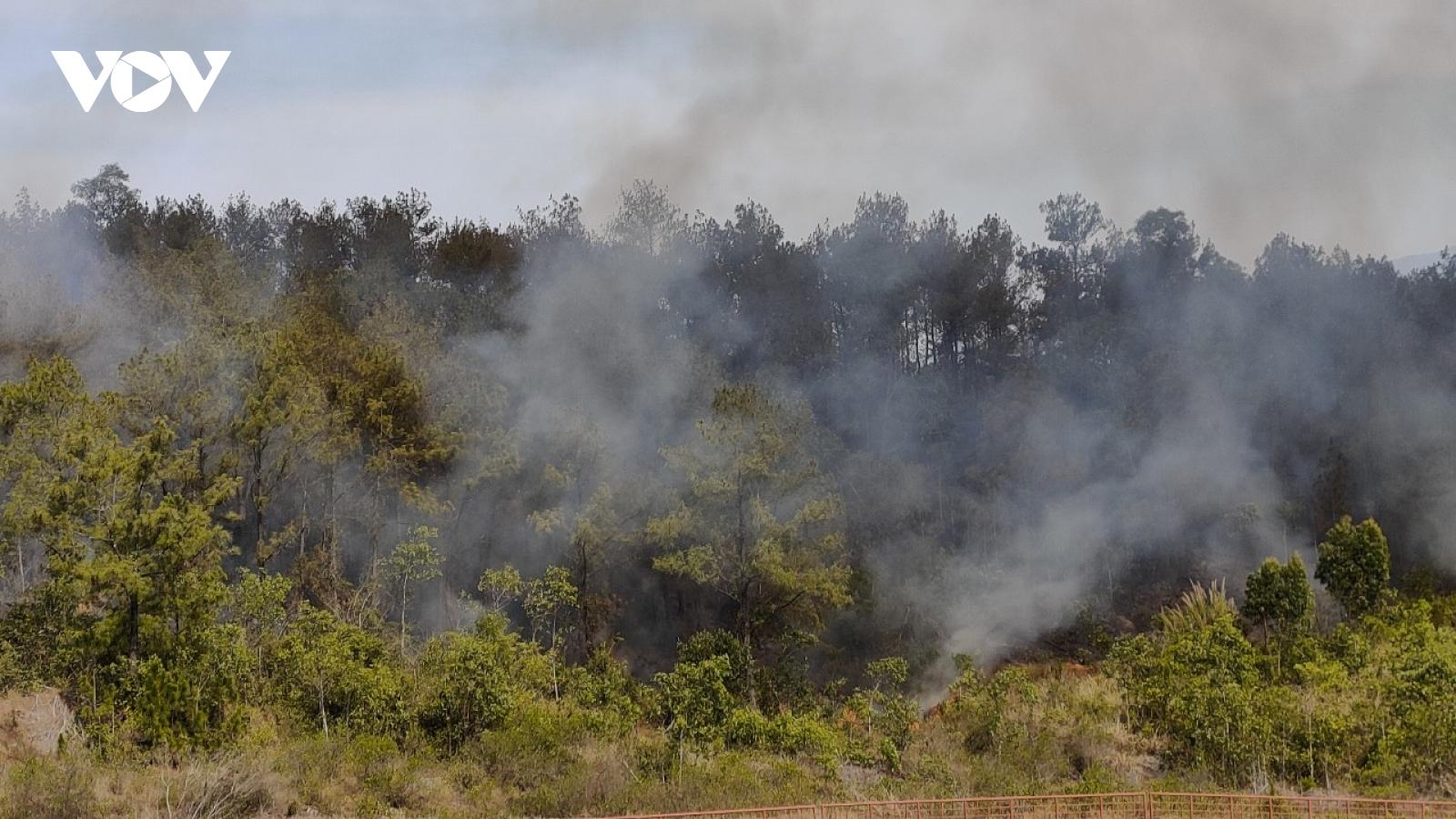 Hàng trăm người khống chế đám cháy rừng ở Quảng Nam