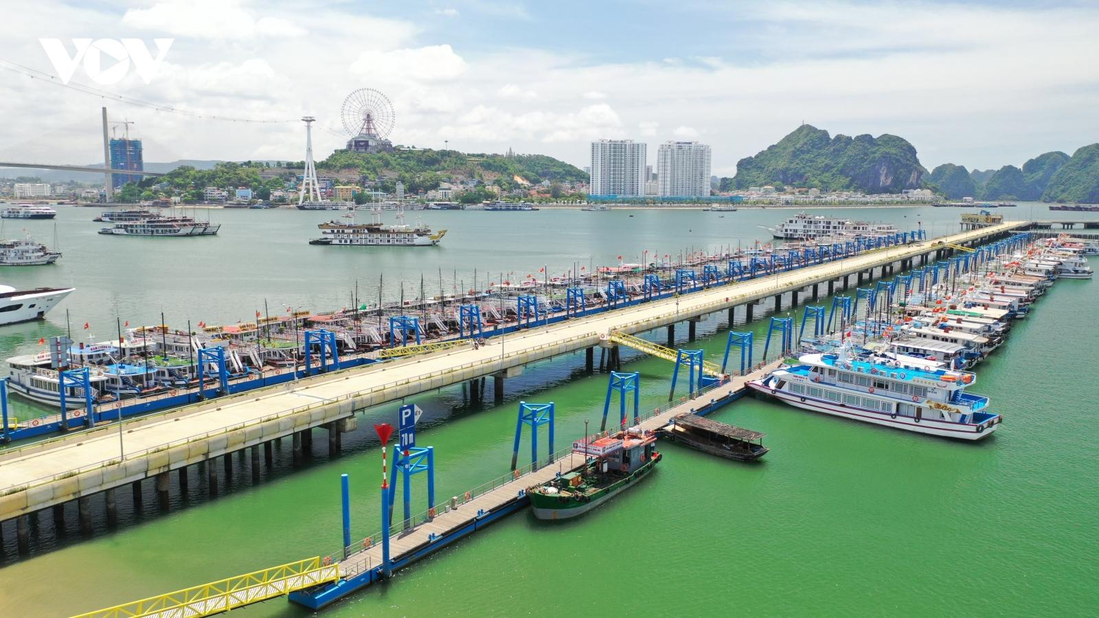 """Đội tàu du lịch Quảng Ninh """"ngắc ngoải"""" chờ chính sách giải cứu"""