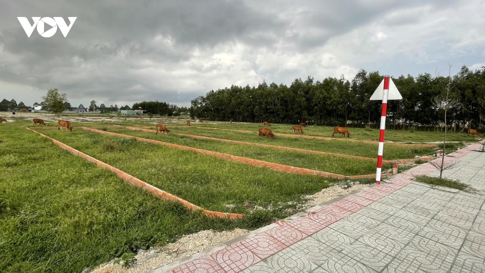 Mất kiểm soát tình trạng phân lô, bán nền trên đất nông nghiệp ở Bà Rịa – Vũng Tàu