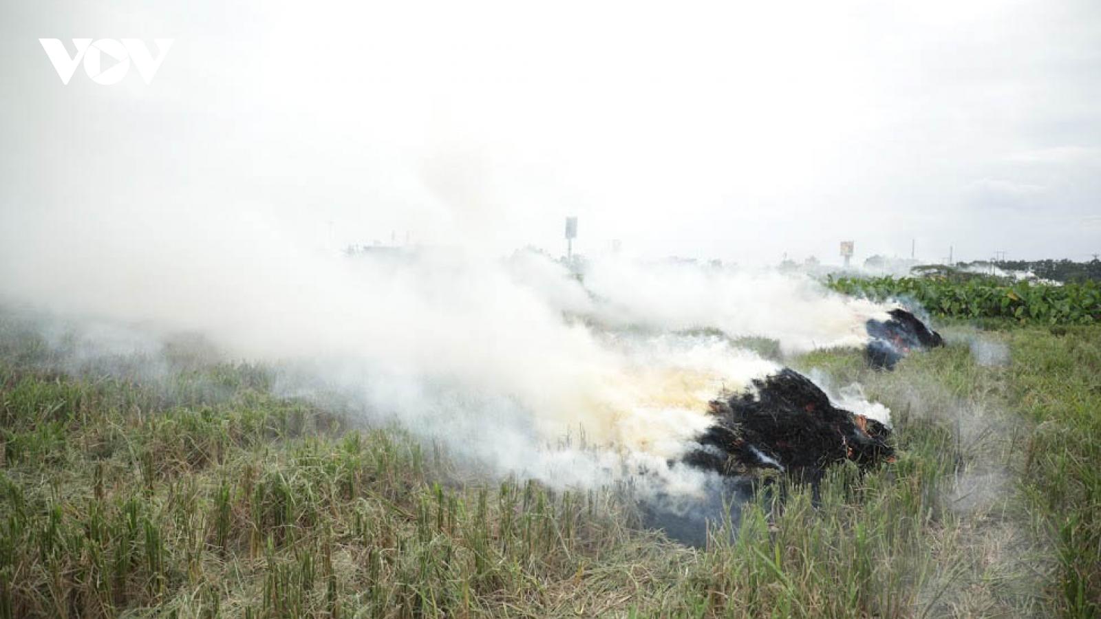 Bộ TN&MT yêu cầu tăng cường kiểm tra, xử lý nghiêm việc đốt rơm rạ gây ô nhiễm