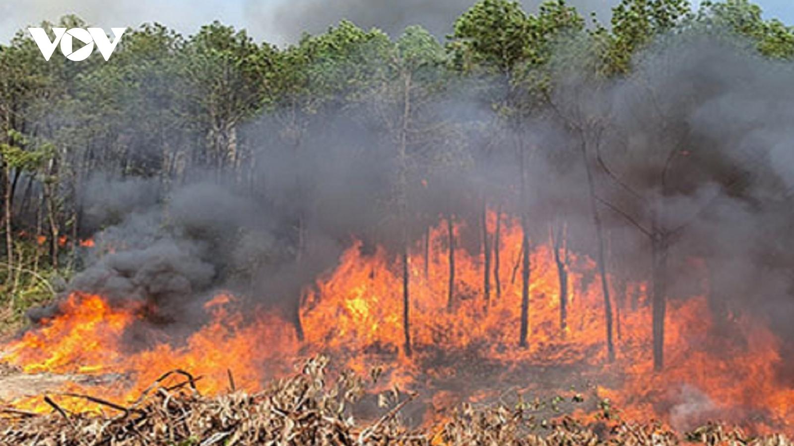 Cháy lớn, lửa bốc cao trên đồi Eo Gió (Thừa Thiên Huế)