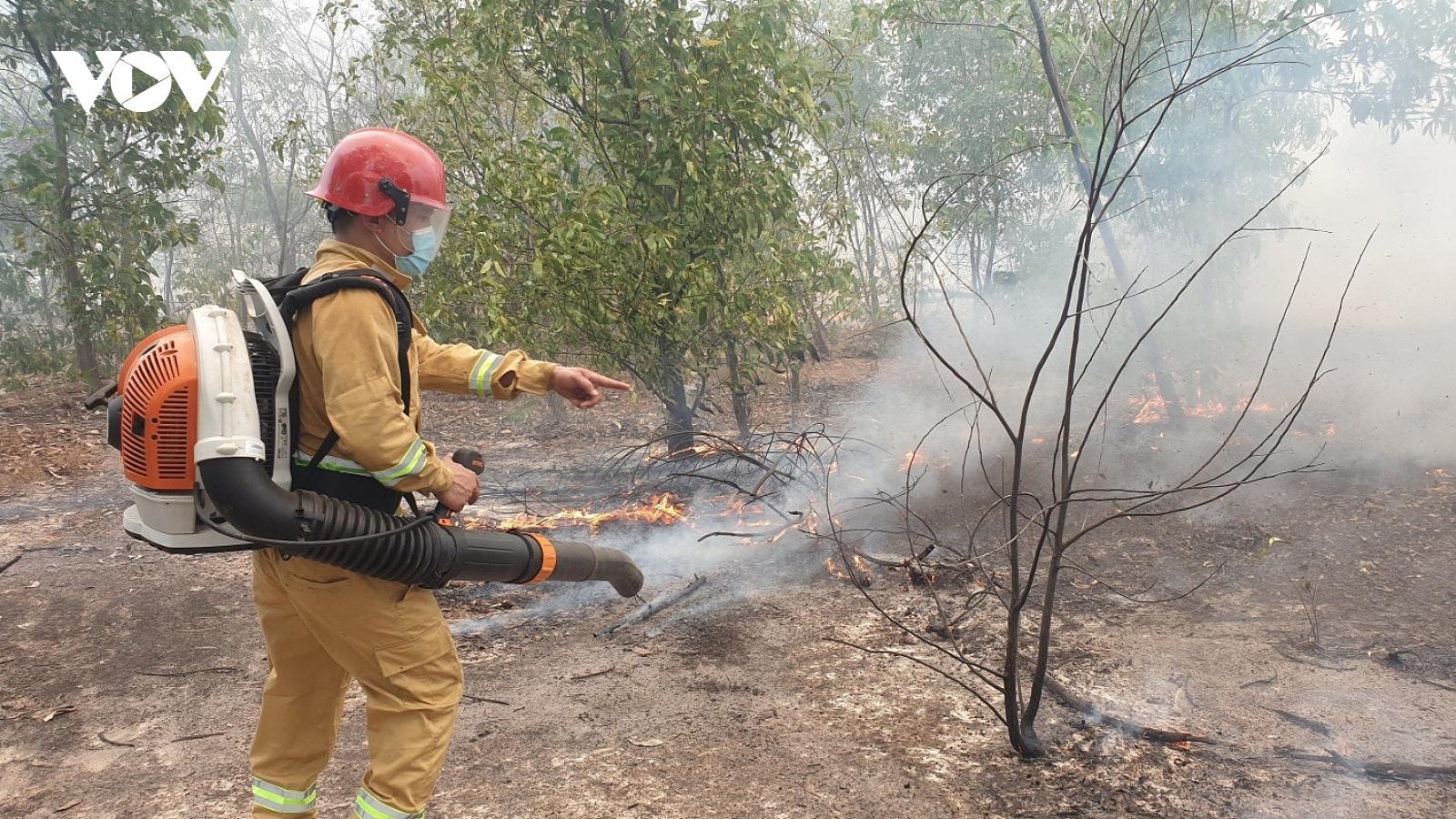 Cháy rừng phòng hộ ven biển ở Quảng Nam