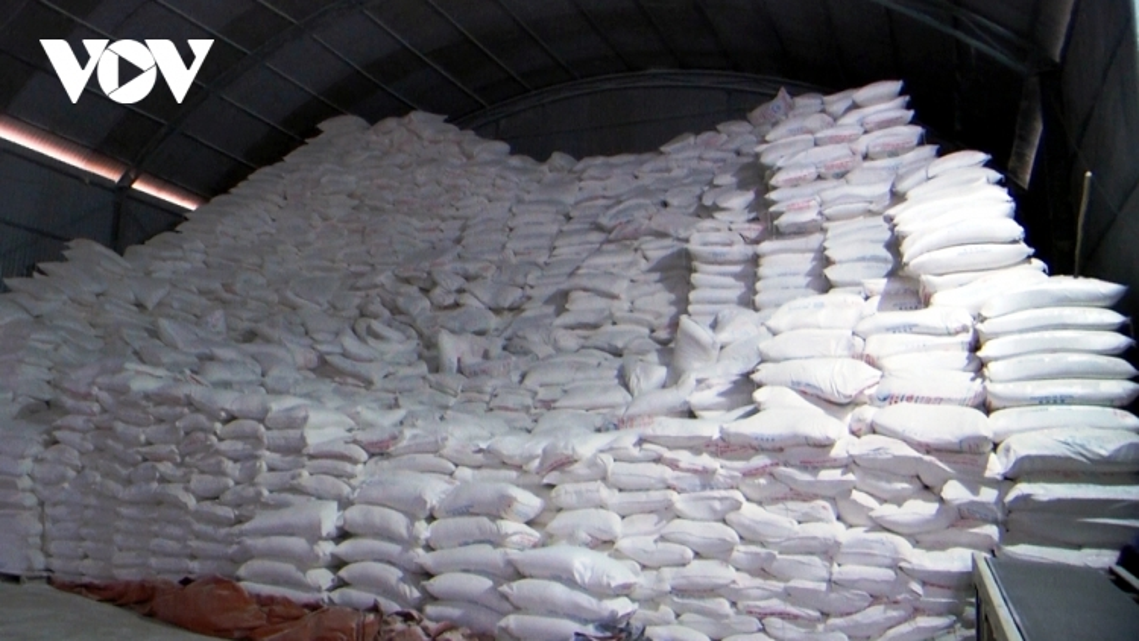 Doanh nghiệp chế biến nông sản ở Yên Bái gặp khó khi xuất khẩu