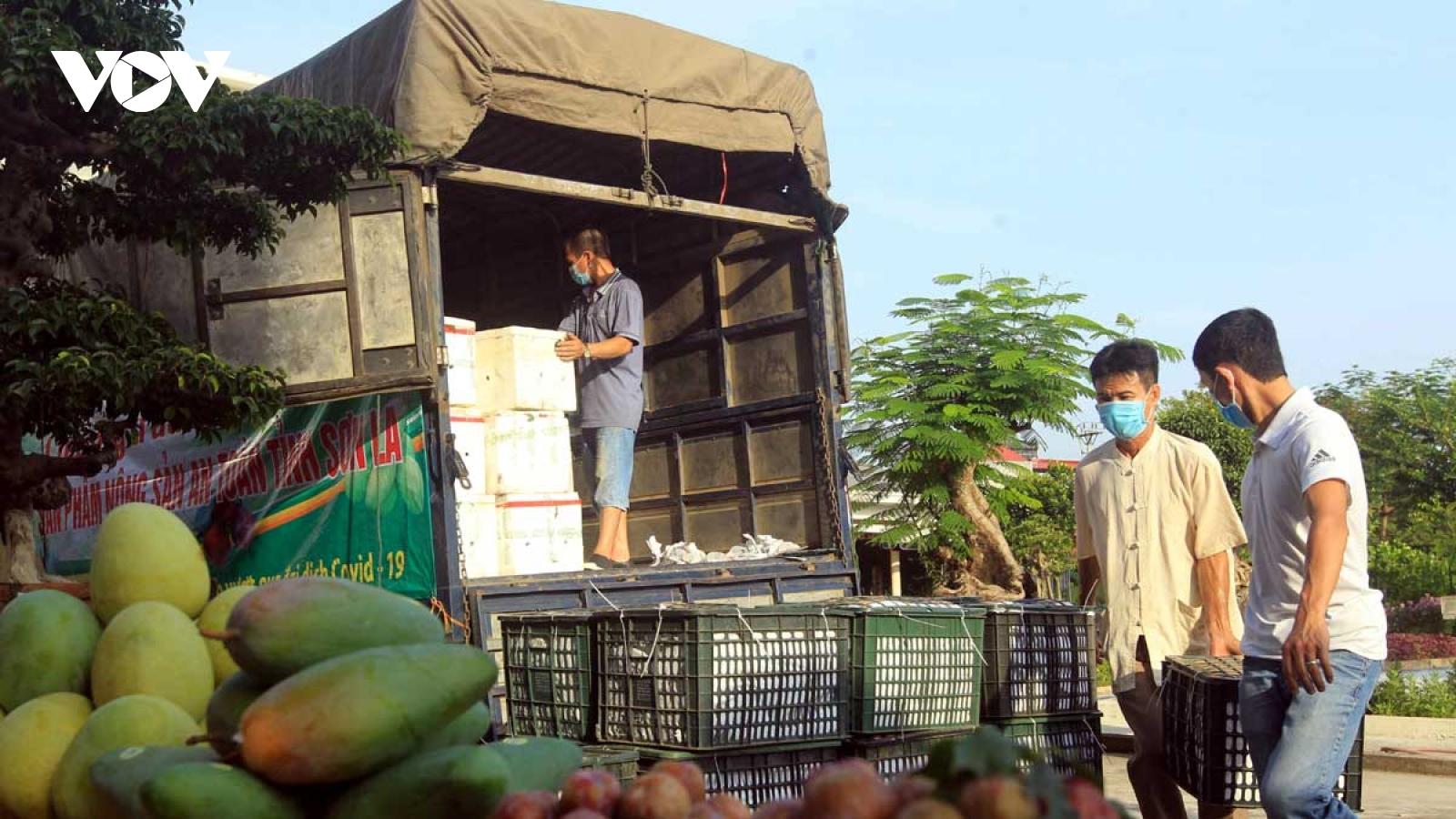 Nông sản Sơn La được ưa chuộng ở đất Cảng