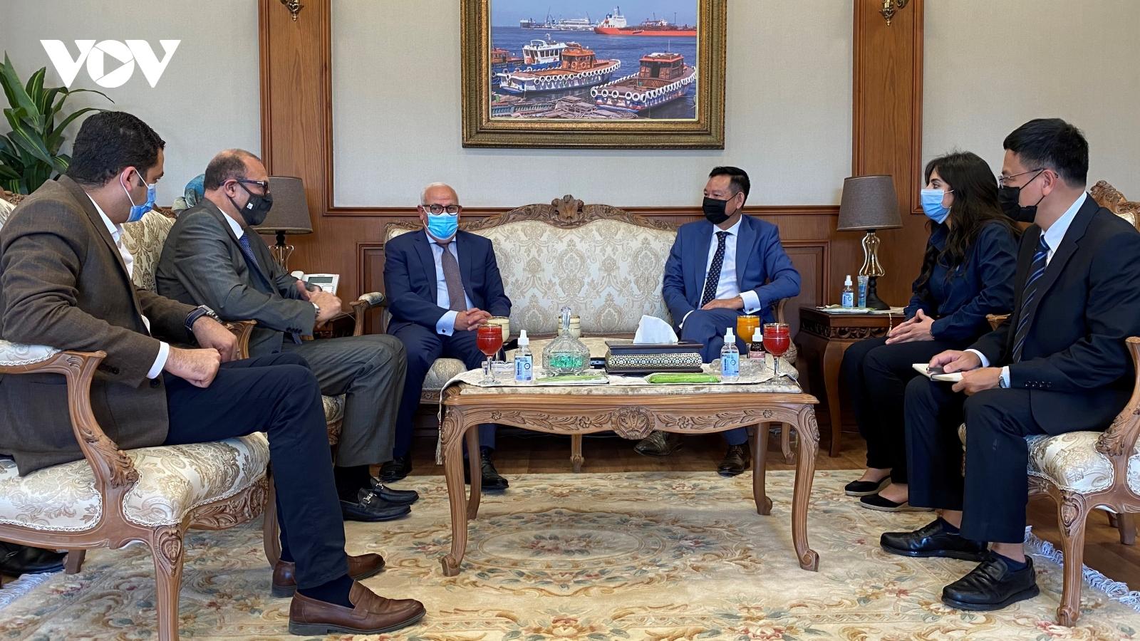 Thúc đẩy hợp tác giữa Việt Nam với các thành phố của Ai Cập