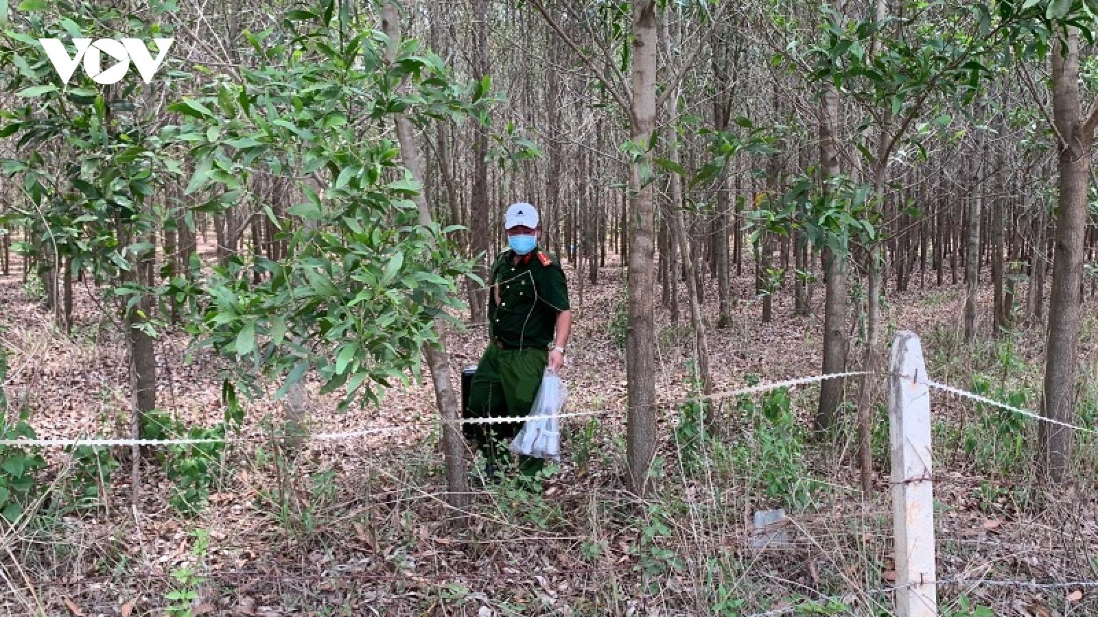 Phát hiện thi thể tại khu rừng tràm ở Bình Thuận