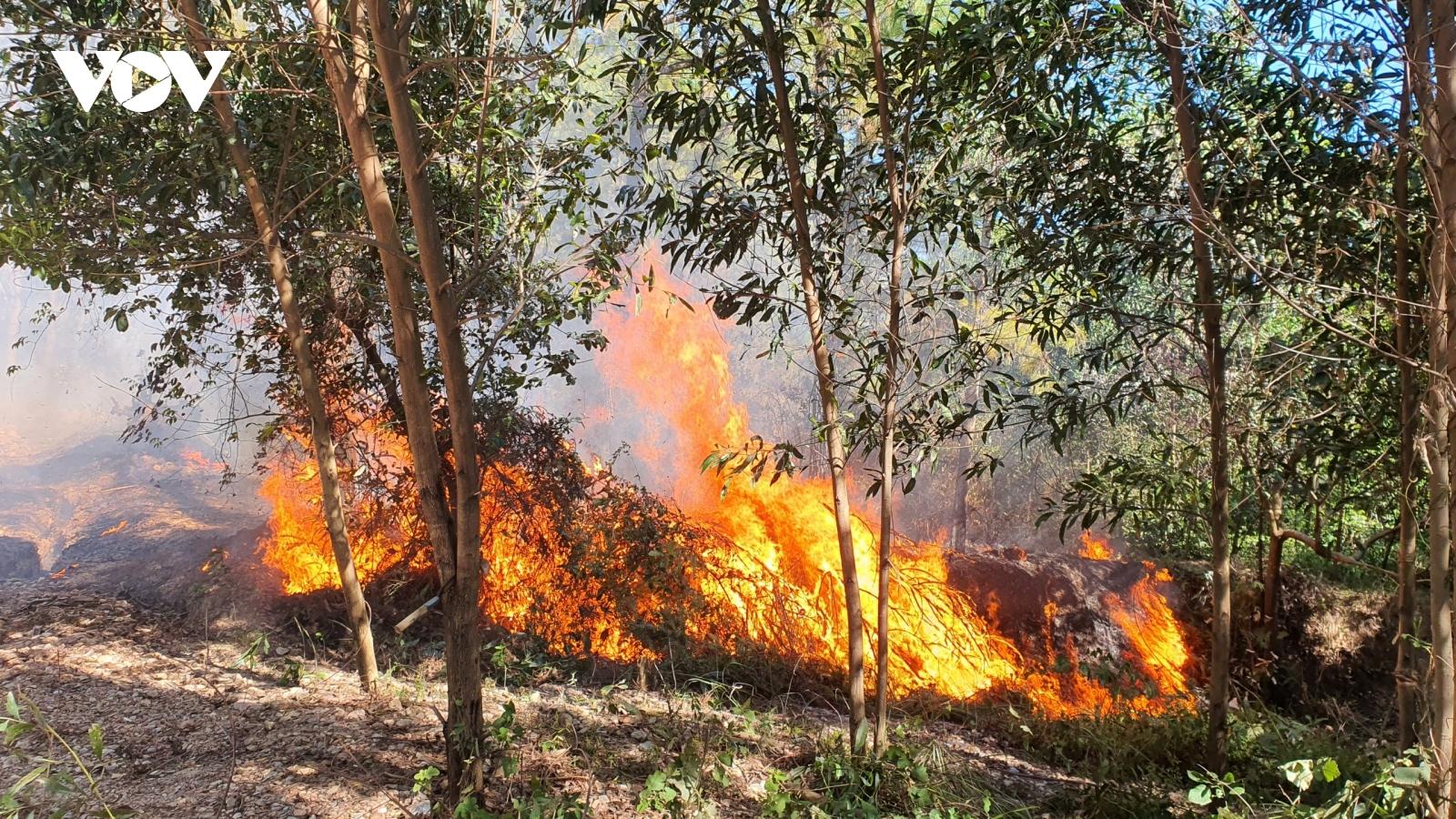 Huế huy động 800 cán bộ chiến sĩ và 80 xe cứu hỏa để khống chế cháy rừng