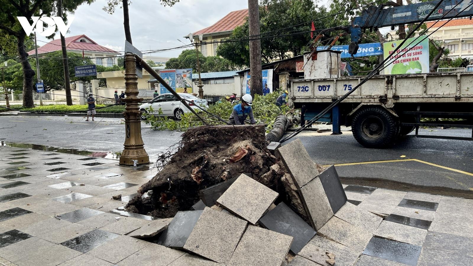 Nhiều cây xanh ở Vũng Tàu bị bật gốc, đổ ngã sau mưa