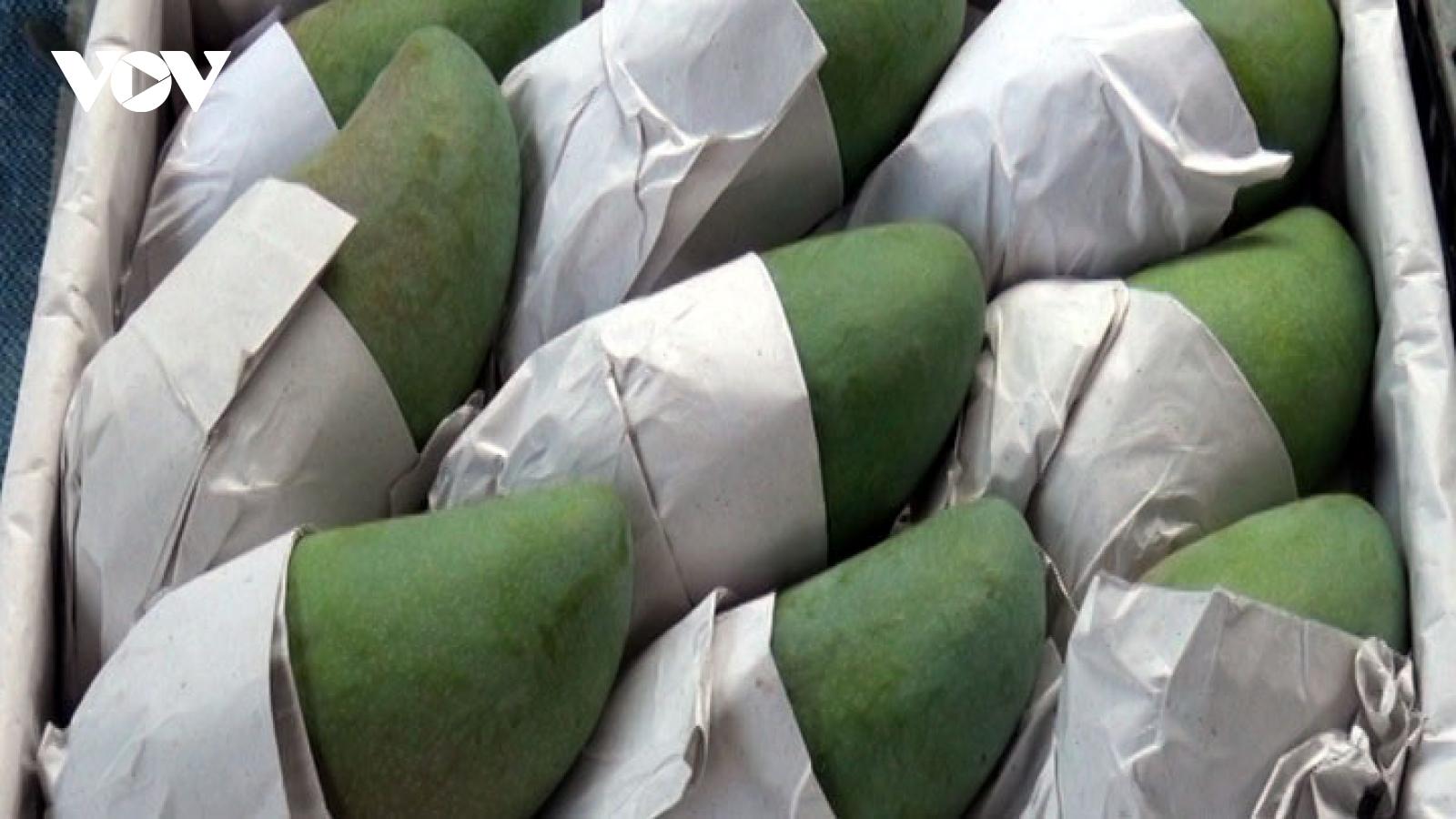 Sơn La tiêu thụ gần 60.000 tấn xoài, mận, chủ yếu sang Trung Quốc