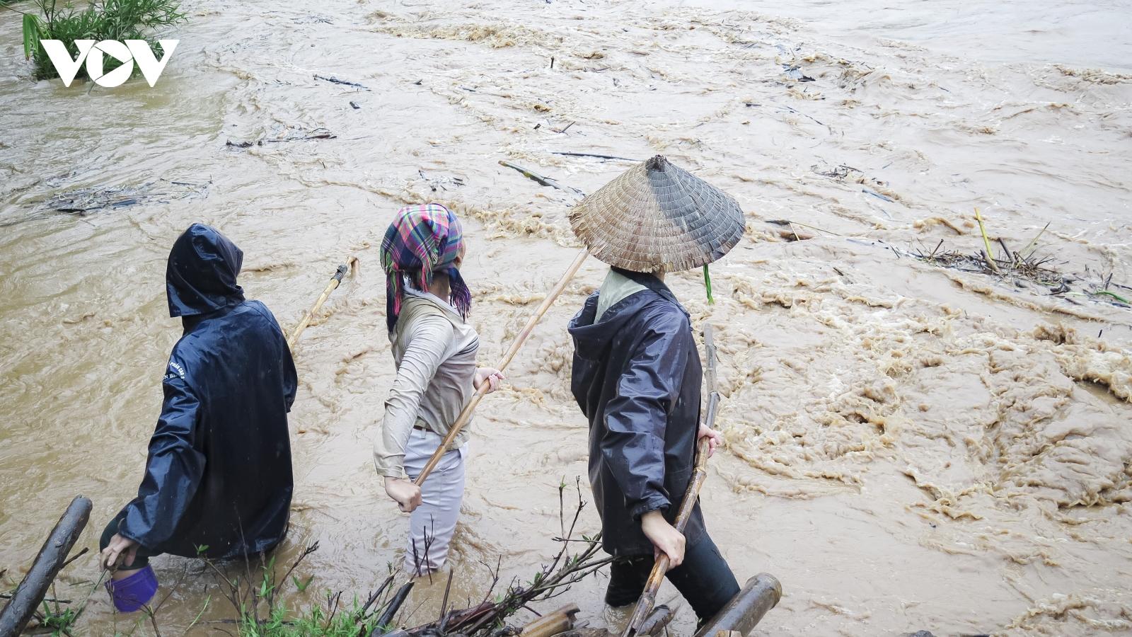 Bất chấp nguy hiểm, người dân Điện Biên vẫn đánh bắt cá trên suối lũ