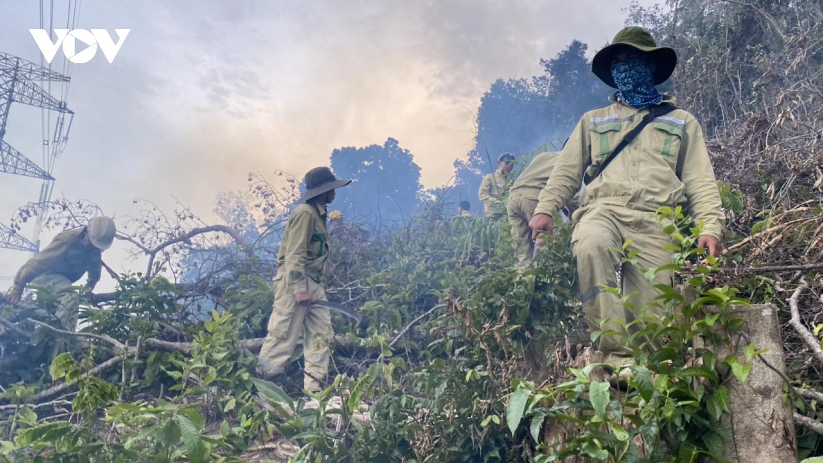 Cháy rừng gây sự cố nghiêm trọng đường dây 500kV Dốc Sỏi – Pleiku 2