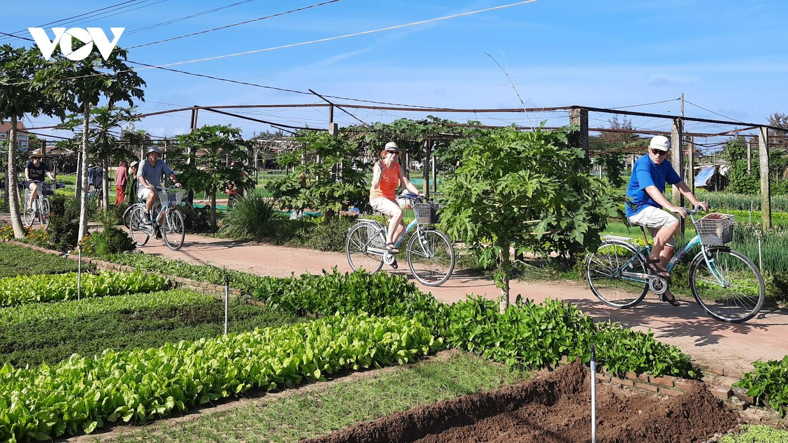 Hội An phát triển du lịch xanh, thu hút khách chi tiêu cao
