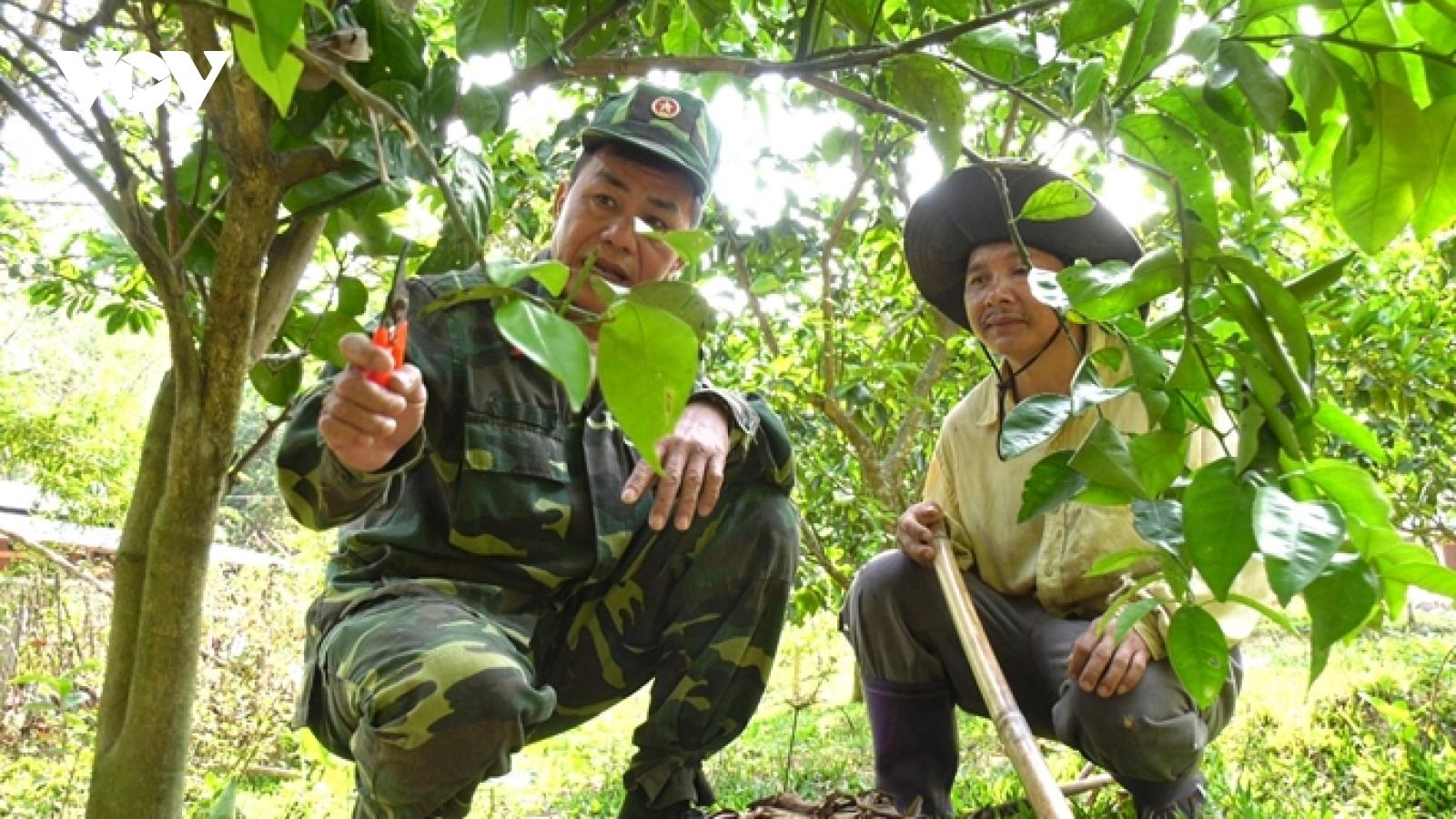 Nhiều Đảng viên làm giàu trên vùng đất khó miền núi Quảng Nam