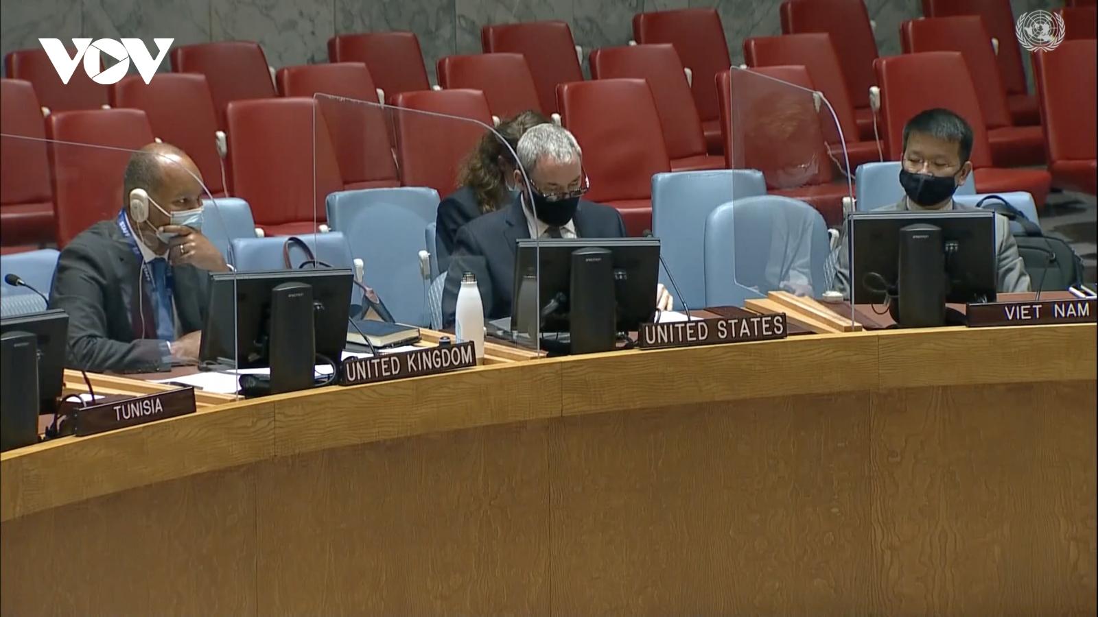 Hội đồng Bảo an thông qua Tuyên bố Chủ tịch về Tây Phi và khu vực Sahel