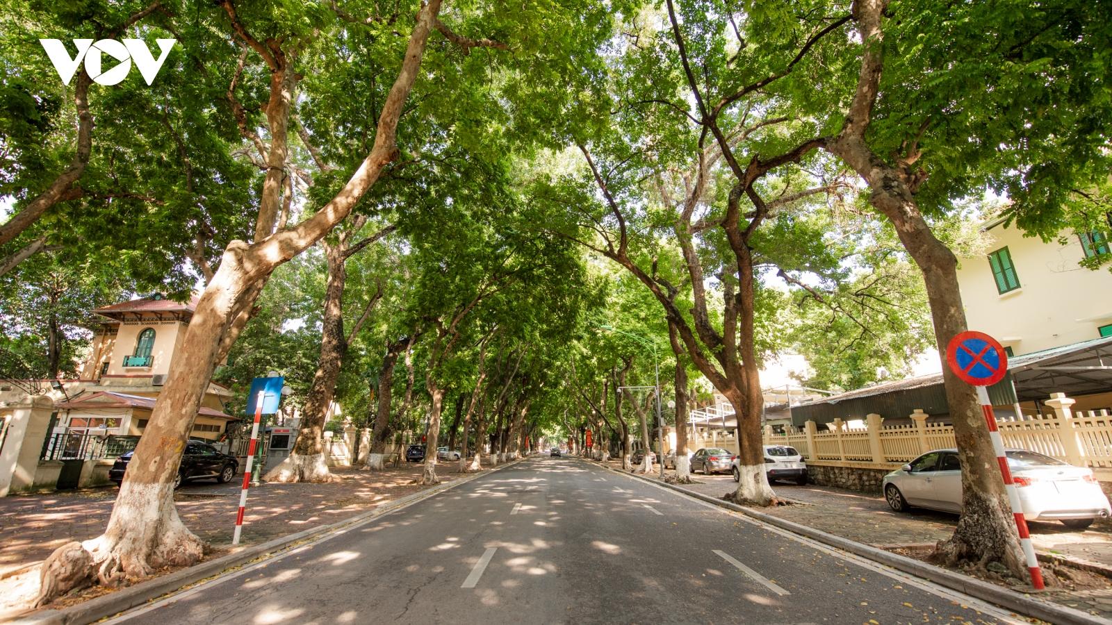 Ngắm đường phố Hà Nội rợp bóng cây xanh, thanh vắng những ngày giãn cách