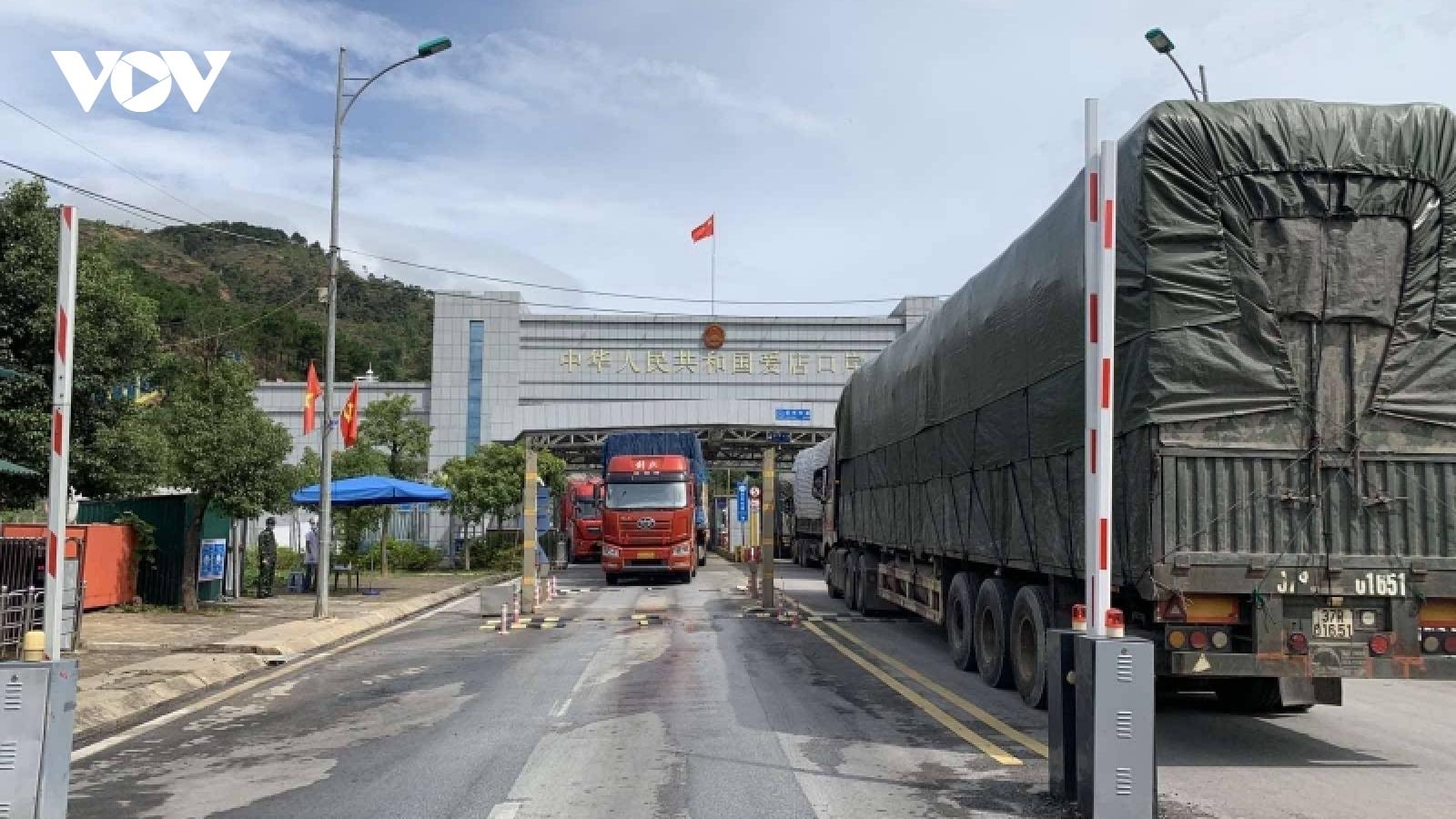 Thực hiện Đề án thí điểm nhập khẩu dược liệu qua cửa khẩu Chi Ma, Lạng Sơn