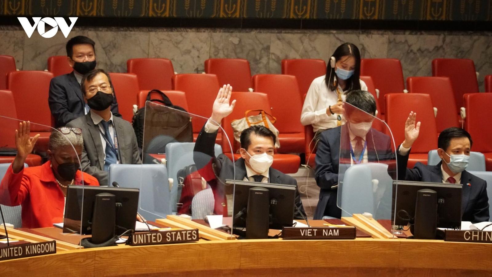 Hội đồng Bảo an Liên Hợp quốc thông qua 2 nghị quyết về Afghanistan và Iraq