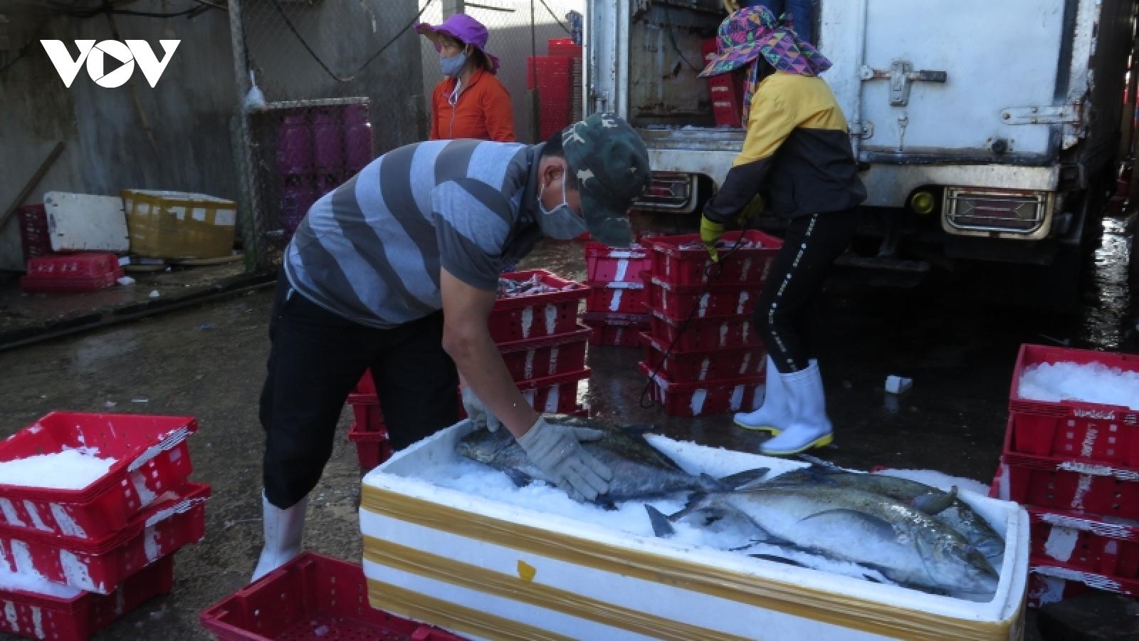 Quảng Ngãi nỗ lực giải quyết đầu ra cho nông sản, hải sản