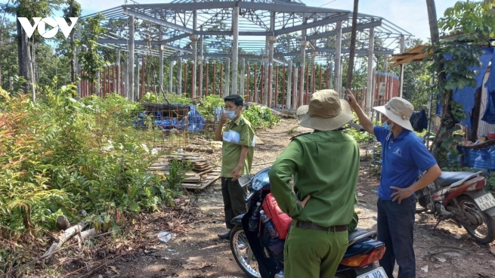 Vụ gỗ trái phép tại Trung tâm bảo tồn voi Đắk Lắk: Khám nghiệm hiện trường